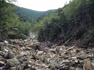 Streambed, obliterated by slide