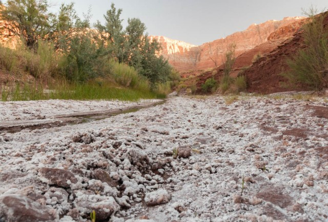 A dry and salty wash near Cliff Dweller's Lodge.