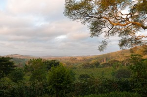 Sunrise at Gibbs Farm hotel, near Ngorogoro.