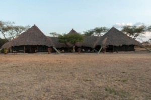 Main buildings at west-central nyumba, Serengeti N.P., Tanzania.