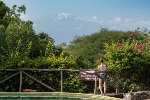 View of Kilimanjaro from KIA Lodge, near the airport.
