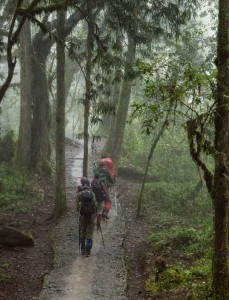 The final day involves a drippy walk through the cloud forest.