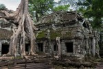 These trees support the temple, and destroy it too - Ta Prohm - 11c Buddhist Angkor-area temple