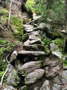An example of the rugged trail along Wildcat ridge, and the impressive rockwork needed to support hikers.  It's even steeper than this photo makes it look!