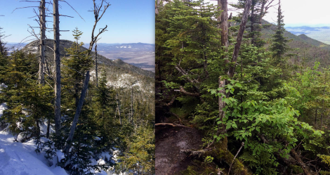 Couchsachraga Ridge comparison