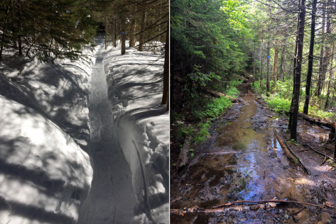 Bradley Pond Trail comparison