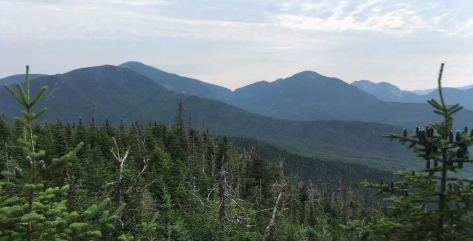 View of Skylight, Marcy, Haystack, Gothics and more from Mount Allen.