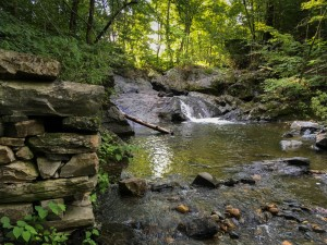 A pretty waterfall forms a nice swimming hole, just below Route 10.
