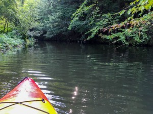 Grant brook is navigable pretty far, at least by kayak.