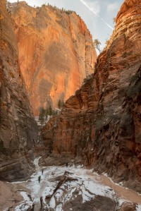 The trail to Observation Point follows a slot canyon.