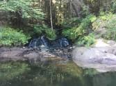 A pretty waterfall along the Connecticut River; annual canoe trip.