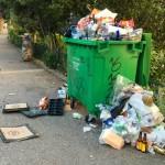 Sunday morning trash, along the Seine, in Paris.