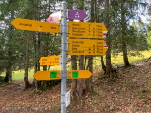 The first major trail junction; we started at Arvenbuel, near Amden.