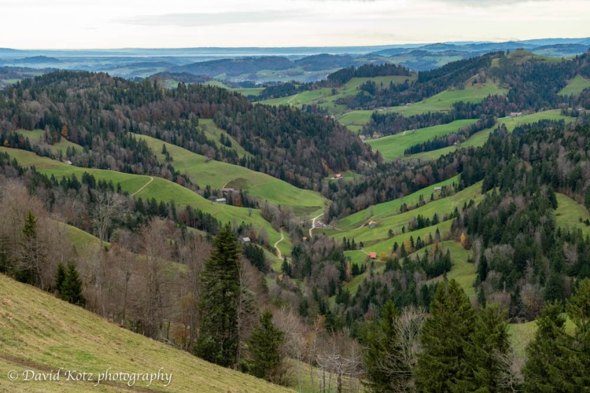 Zurich Canton mostly comprises flat farmland and rolling hills.