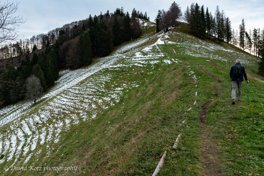 A dusting of new snow highlights the horizontal ruts made by grazing livestock.