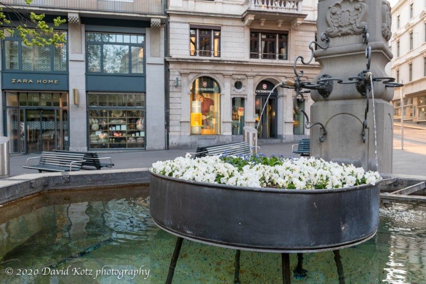 One of many public fountains in Zürich.