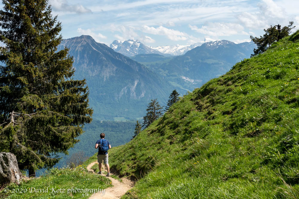 Andy descends through the alpine meadows with views of the Alps beyond.